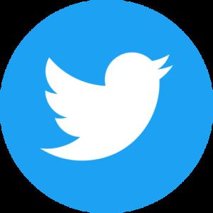 icon twitter réseaux